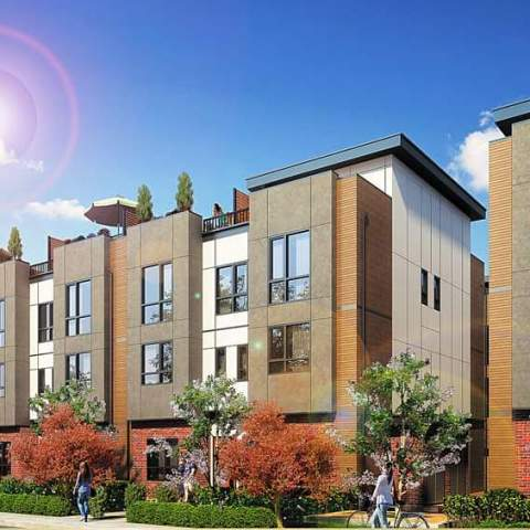Terraces 3 Rendering Langley