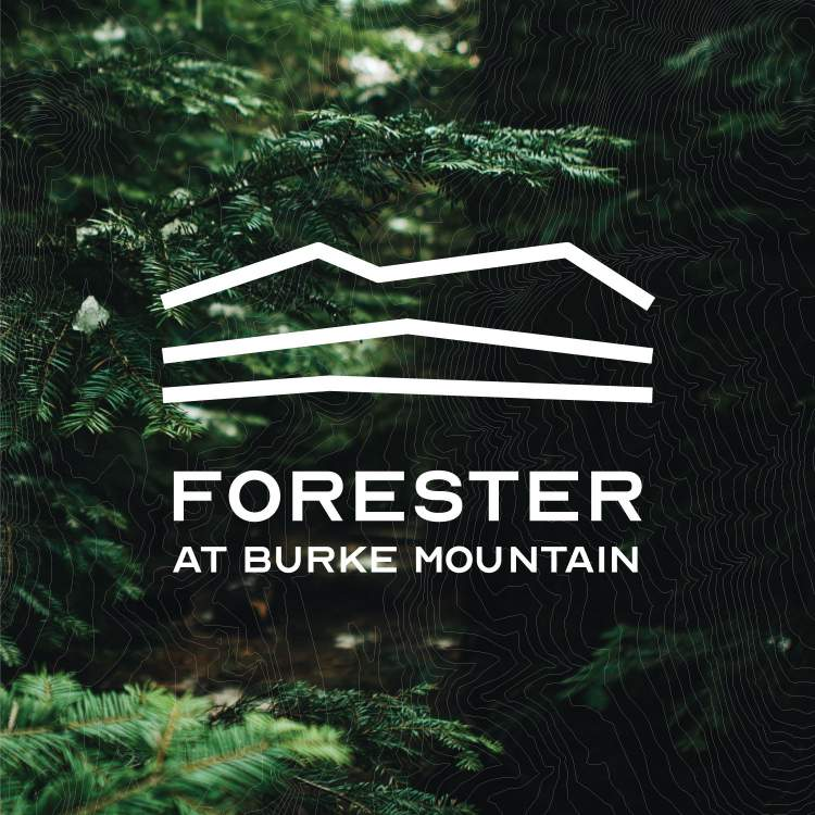 Forester Coquitlam new townhomes title card