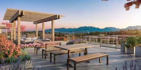Rendering Of Valeo Rooftop Terrace